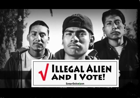 Image result for illegals voting