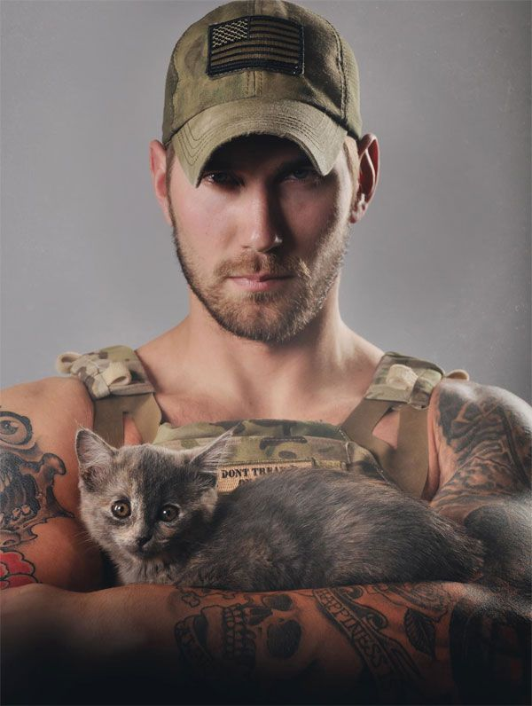 matt best with kitten